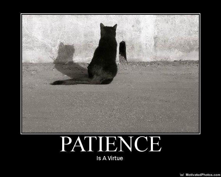 "Can Someone Please Define ""Patience?"""
