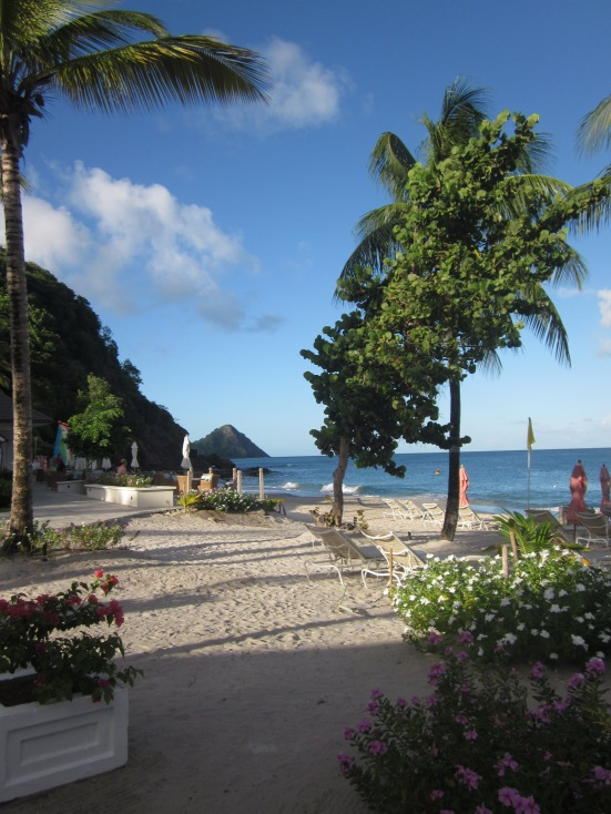 Main Beach Area