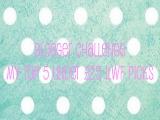 Blogger Challenge: My Top 5 Under £25 In Love With Fashion SalePicks*